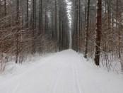10.01.16 Pinder Trail